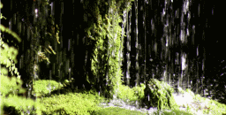 des gestes verts
